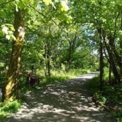 Lochwinnoch 25 Miler Route